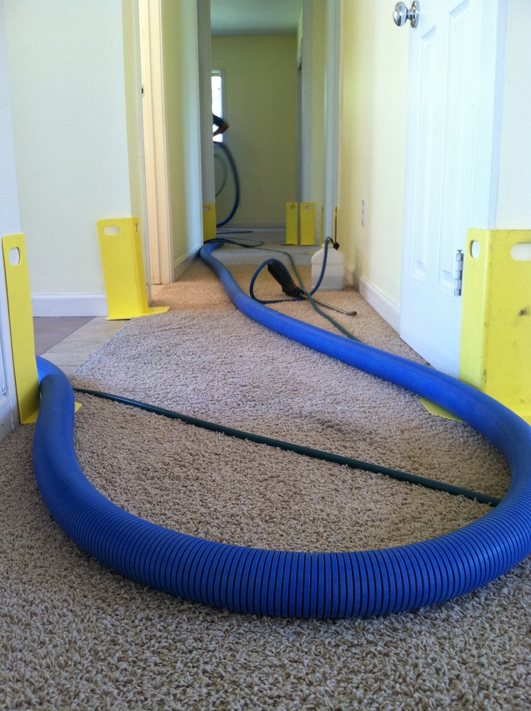 Carpet Cleaning Deals Wildomar Ca Expert Area Rug Carpet Cleaners