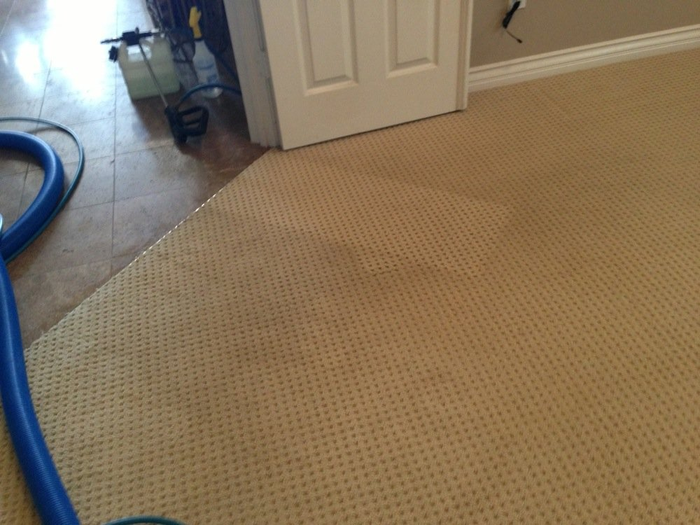 Affordable Carpet Cleaning Service Wildomar Carpet Cleaners