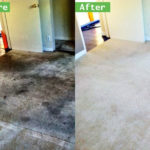 Most Effective Carpet Cleaning D.I.Y. Tips in Wildomar Carpet Cleaners