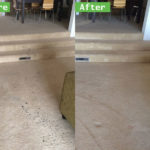 Best Tips on Cleaning Up After Pets in Wildomar Ca Carpet Cleaners